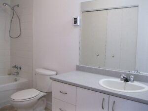 Large 2 chambres a coucherau #2-1024 Rue Notre Dame, Gatineau Gatineau Ottawa / Gatineau Area image 5