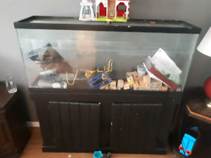 fish tank .