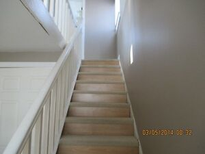 2 or 3 bdr house for rent. BayBulls Ocean View Available Now St. John's Newfoundland image 7