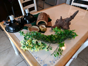 Reptile tank and supplies