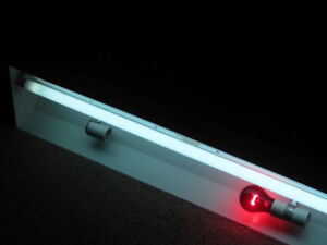 Reptile lights, heat lamp, heating pad, infra red bulbs