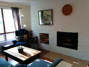 Jan-Mar 2017 Furnished Cozy 2br In Convenient North End Location