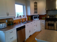 Free Painting Estimates-Professional Painters Ready