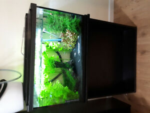 Fish Tank with stand and supplies For Sale