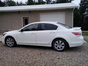 Honda Accord Sedan *new price*