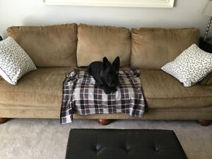 Couch and Love Seat - Free