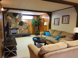 Fully Furnished Month-to-Month Basement Suite in Mayfield