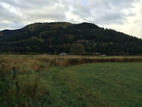 Build your dream home on 19.24 ACRES 10 min's to SUNPEAKS!