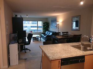 $1850 / 2br - 850ft2 - 2 Bedroom Apartment for rent Apr 1 2017