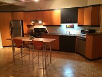 1250 sq ft rooftop loft, private patio, parking, Sept or Oct 1