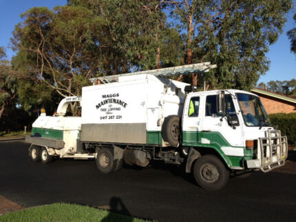 Maggs Maintenance Tree Services