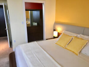 Furnished apartment with covered parking stall, swimming pool, s