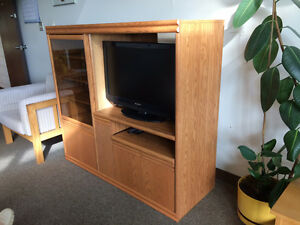 entertainment unit with flat screen tv