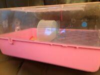 Hampster cage and run around ball