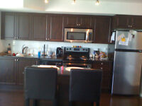 Downrown Toronto / Fort york Blvd Luxury Condo available now