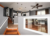 Gorgeous Renovated Home in Martindale