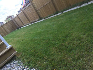 Landscaping and Contracting