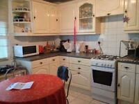 Choice of Double Rooms in Limehouse - please call +447572 528 106 (11am--8pm Monday to Saturday)