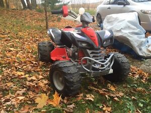12V power wheels ATV.