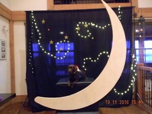 Wedding decor / moon photo booth and back drop London Ontario image 2