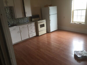 one bedroom apt.for rent 3 minutes from amherst