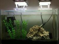 2 ft Acqarium Fish Tank Full Set Up