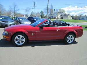 2008 Ford Mustang  V6convertible TRADE WELCOME Convertible