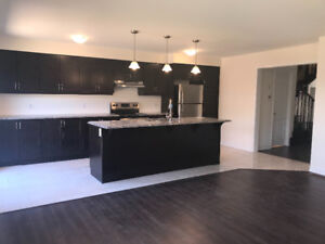 Beautiful Brandnew 4 Bedroom with Walk Out Basement