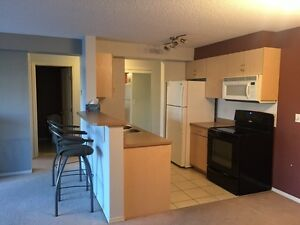 2 Bedroom, 2 Bathroom Condo for rent, heated parking, west end