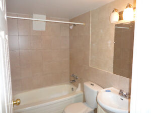New Renovated ,1Br ,10 Vimy Ave , Fairview