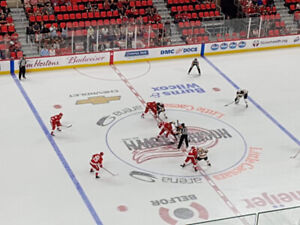 Detroit Red Wings Tickets for Sale