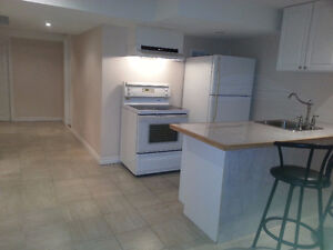 One bedroom basement apartment in Richmond Hill(King Rd/Batrhrus
