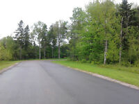 Price Reduced. Treed Lot on Nash Drive-West Royalty