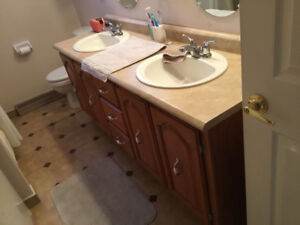 Double Vanity, includes sinks and moen Fuacets