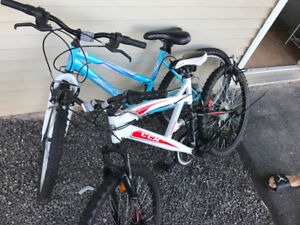 two second used bikes, totally $120
