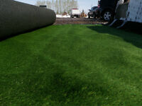 Artificial Turf Special