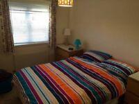 Double en-suite bedroom for rent in a flat
