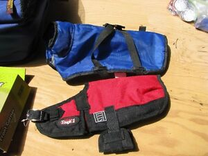 Dog accessories and equipment