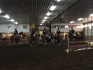 Horse stable looking for trainer.