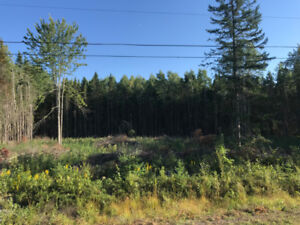 Building Lot for Sale - Patriot Court in Riverbend Subdivision