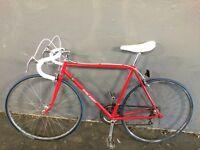 Vintage racer 700c Raleigh road bike