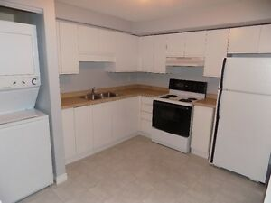 Great 2 bedroom apartment Available January 1st!!!!! Kitchener / Waterloo Kitchener Area image 2