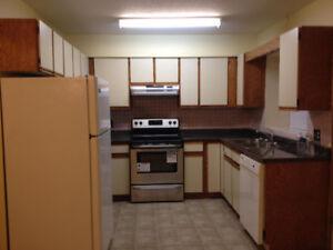 Full Half Duplex for rent