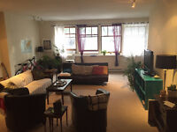 Large 1 bedroom flat in AMAZING downtown location for Sept. 1st