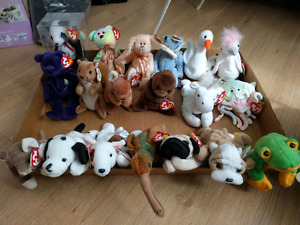 ty Beanie Babies Collectibles