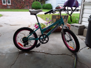 Bicycle (great condition, used less than 5 hours)