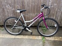 Concept europa ladies mountain bike in good condition