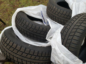Winter Tires on Rims & without rims