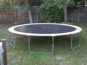 14' spring-free trampoline for sale! We want it gone!
