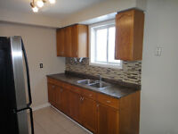 Fully Renovated, Great House, Super Clean